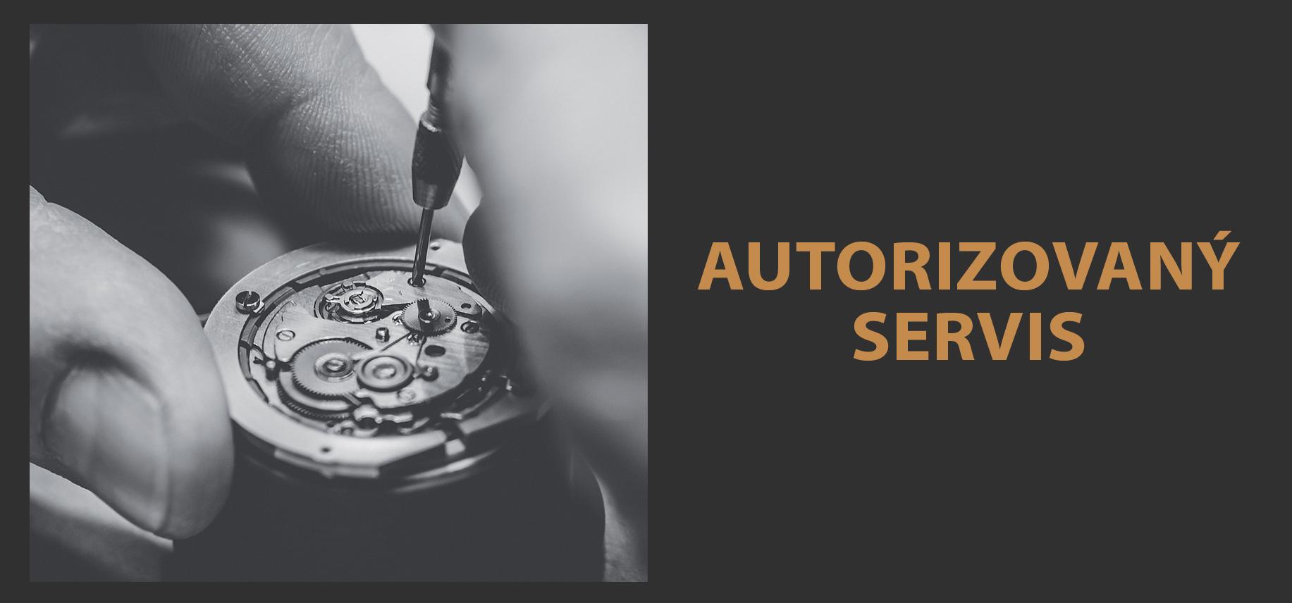 Autorizovaný servis